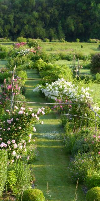 Jardin du bas de Val en Sel